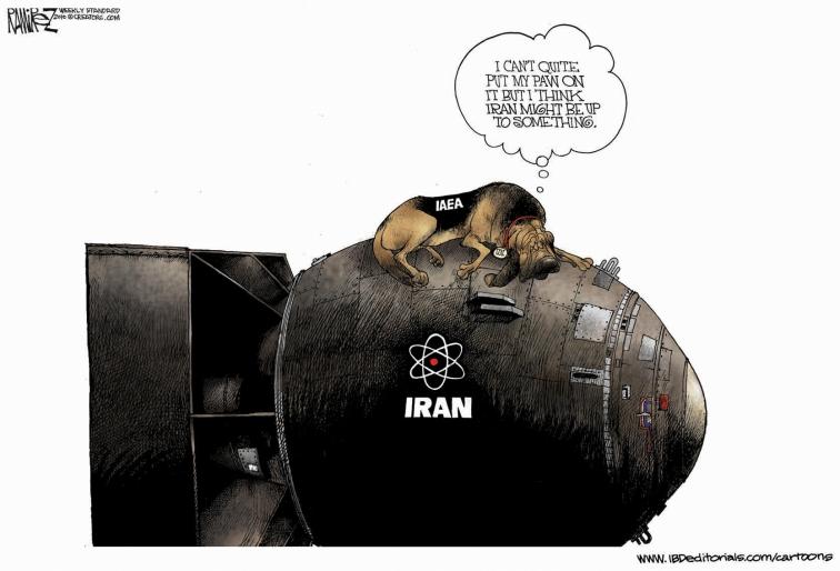 http://cfif.org/v/images/cartoons/2010-02/IAEA-big.jpg