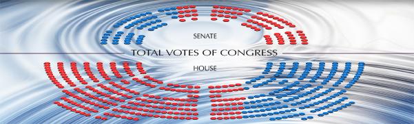 Democrats Trapped In Progressive Echo Chamber